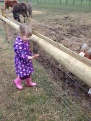 Over Farm 4